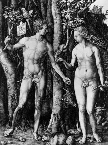Adam and Eve ผลงาน Albrecht Durer